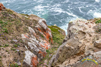 Point Reyes 5-24-15 - _25A3513