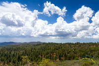 Laguna Mountains 9-6-14 - IMG_6251